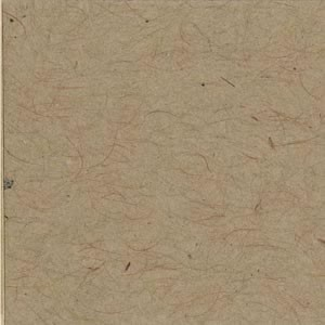 Bazzill Cardstock 12x12 - Kraft