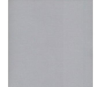 Bazzill Cardstock 12x12 - Smoky