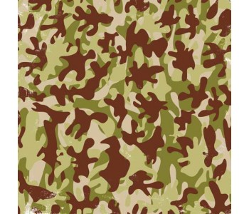 Just Chillin' - Boys Flocked Camo Paper
